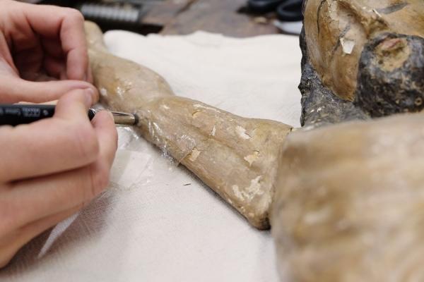 Fassungssicherung mit Glutinleim an einer gefassten Skulptur | Restaurierung Beer