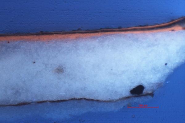 Querschliffanalyse unter UV-Licht am Mikroskop | Restaurierung Beer